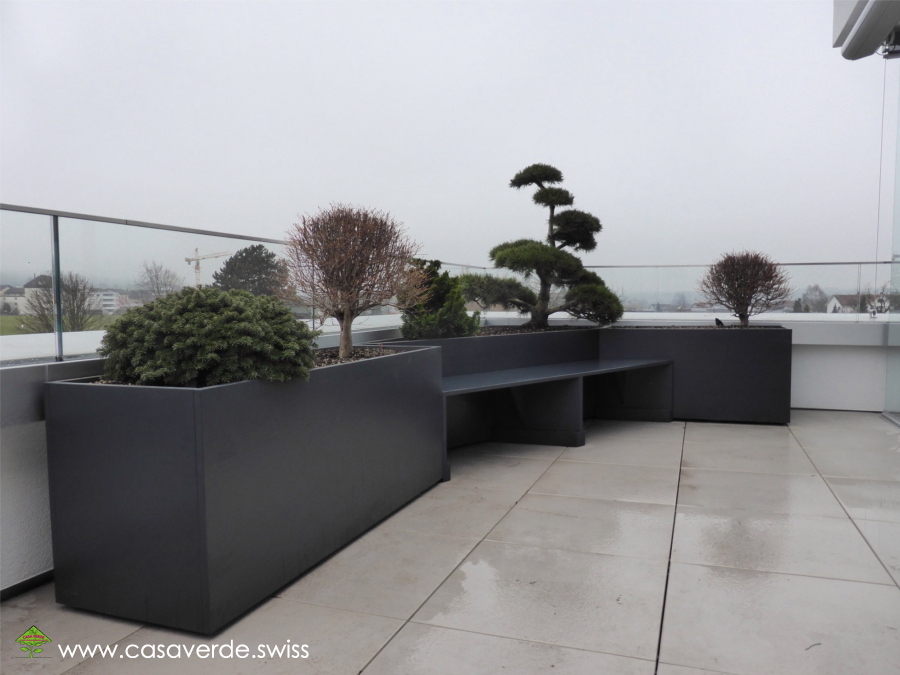 casa verde innen aussenbegr nung ag terrassenbegr nungen gartenbonsai. Black Bedroom Furniture Sets. Home Design Ideas
